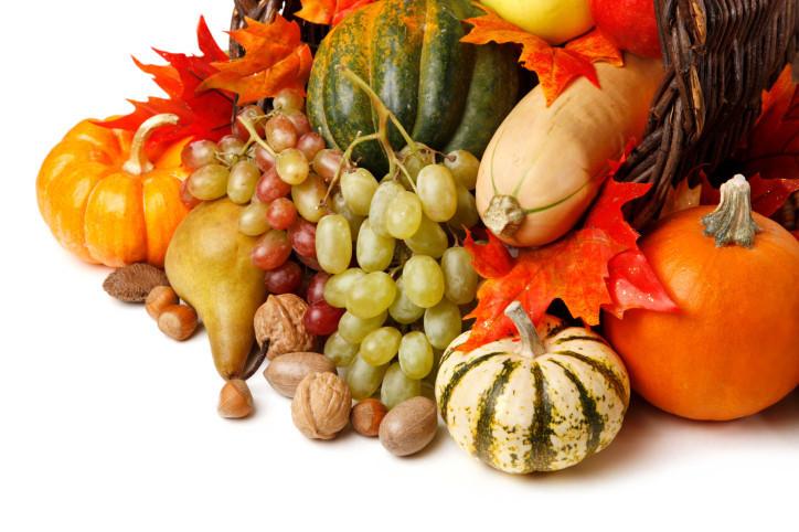 Bountiful Fall Harvest